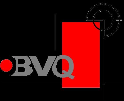 Block y Vigueta de Qro S.A. de C.V.